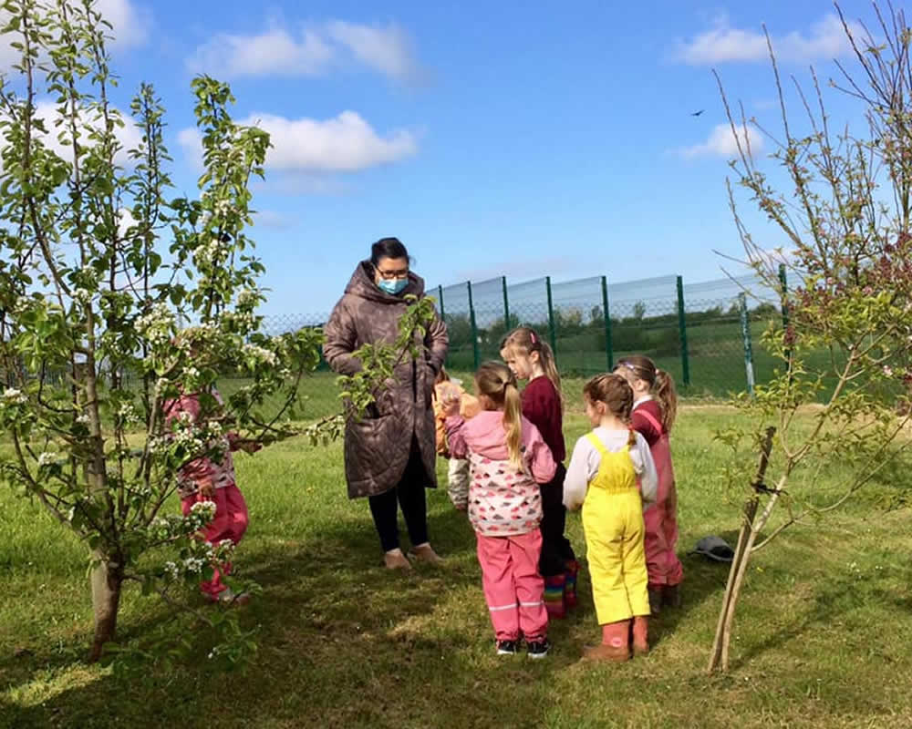 Latest News from MArtinstown National School
